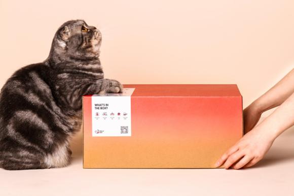 跨界文创新势力,MollyBox魔力猫盒开启养宠消费新主张