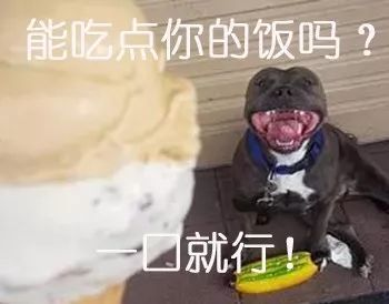 买了个冰淇淋,本想分狗子一点,结果这货一张口...阔怕!