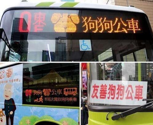 台湾的友善公车,运行两年颇受好评,专供给主人和狗狗的公交车