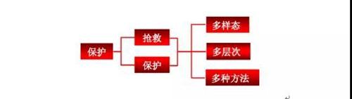 中国非遗的传承发展要在转化上做文章