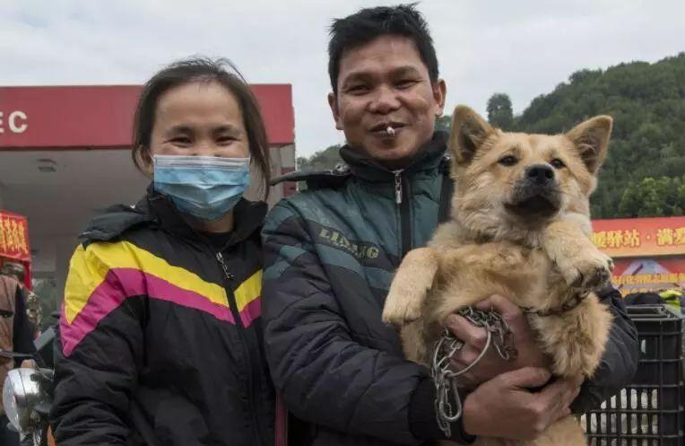 放弃坐飞机,乘车辗转28个小时,只为带狗狗回家过年!