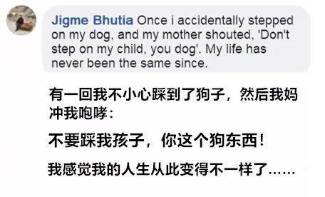 不小心踩了狗一脚,老妈一句话,让我怀疑自己的人生!