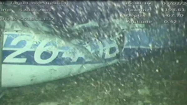 英超球星飞机失联,其姐姐晒出的一张照片,看哭了无数铲屎官!