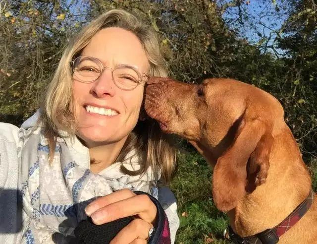 英国一只狗狗偷吃蛋糕后死亡,铲屎官知道为什么吗?