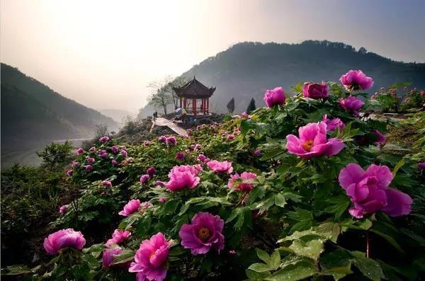 重庆恺之峰景区最新攻略