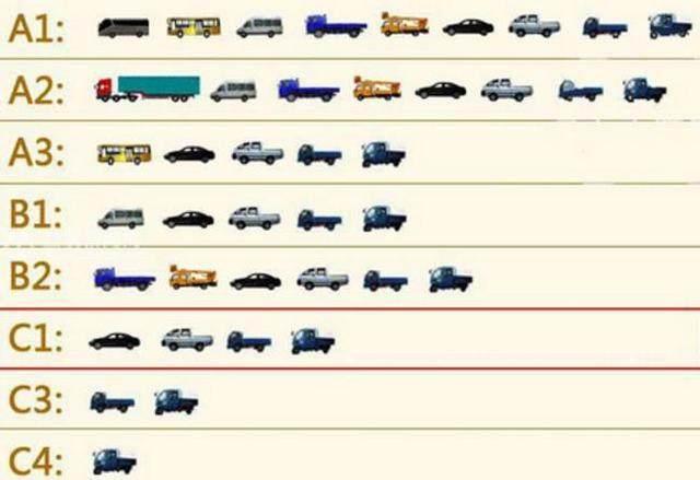 如果你持有C1驾照 这几类车你都能开