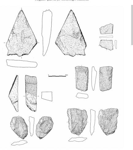 地质学家称终于发现了巨石阵的来源的照片 - 3