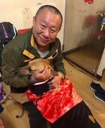 让老爸帮忙照顾几天狗,结果从不发消息的他开始狂轰乱炸