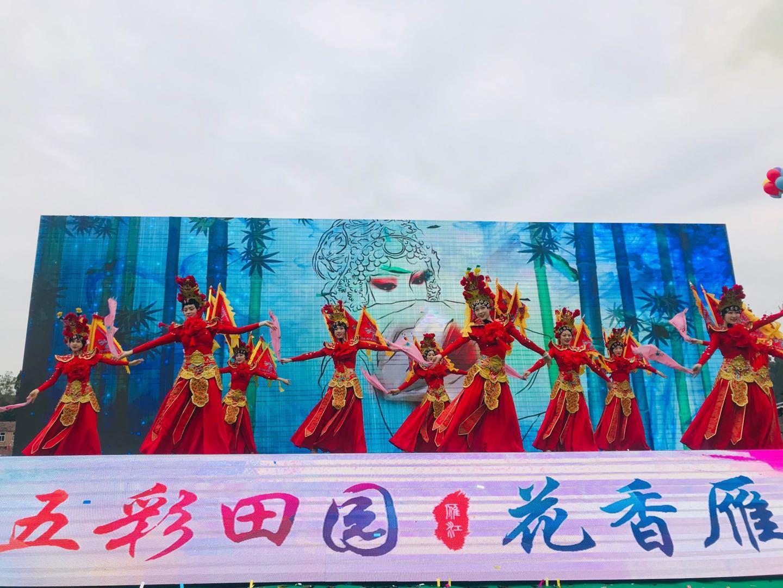 第五届长寿文化旅游暨第四届赏花节即将在雁江开启