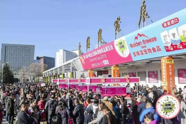 中国第二个10万+宠物展诞生