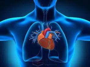 清晨醒来 3个动作6分钟 减少心脑血管意外!