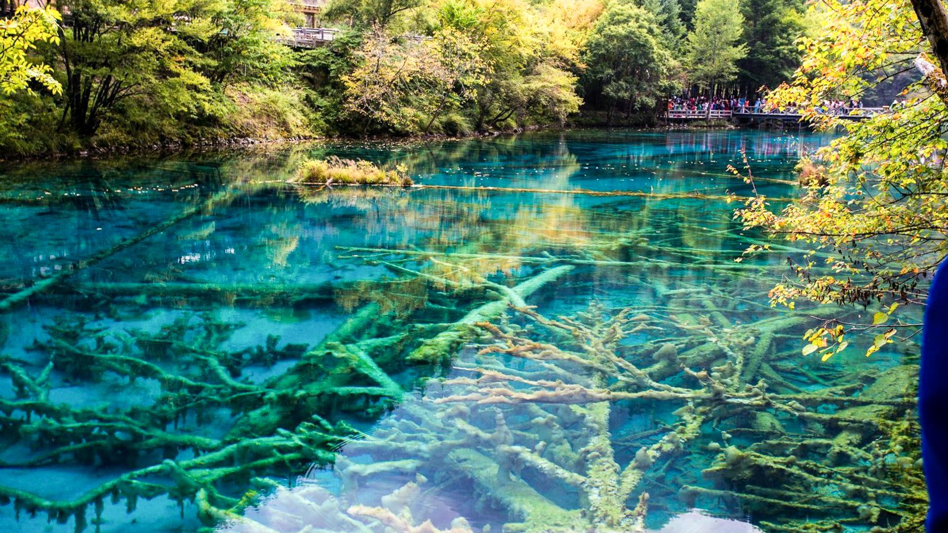 中国最著名5个景区,深受国内外游客喜爱,去过都说好