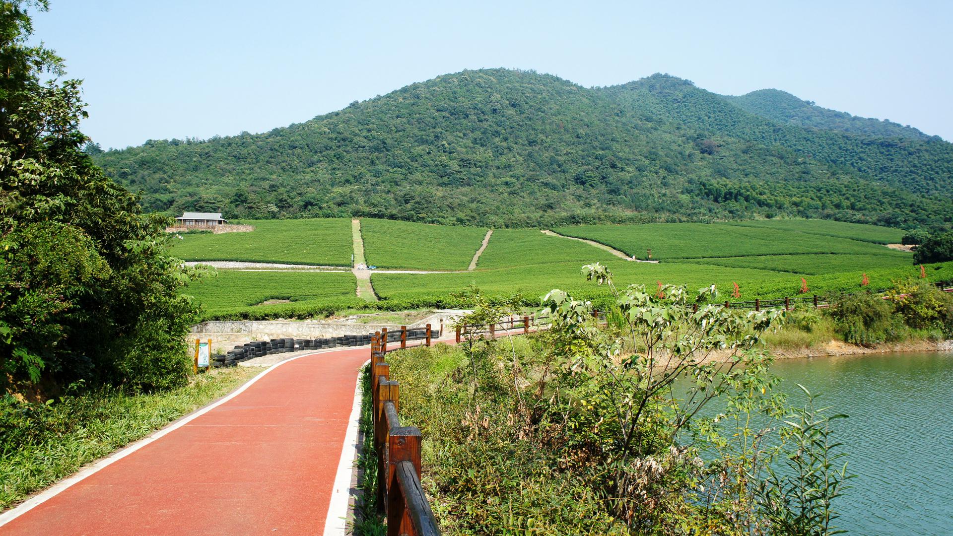 江苏最舒心的踏青地,在网红自行车主题公园里骑行,风景无限好