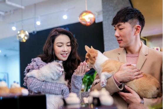 国内首家大型宠物咖啡体验馆在沪开业