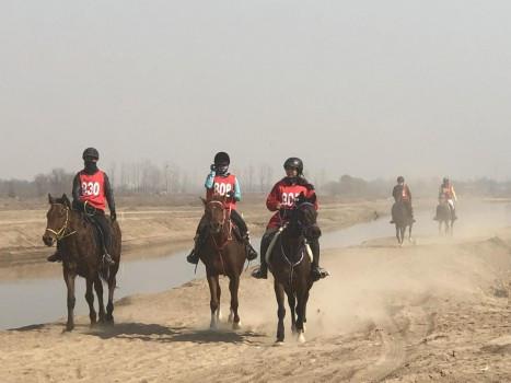 2019中国安平国际马联(FEI)耐力达标赛开赛