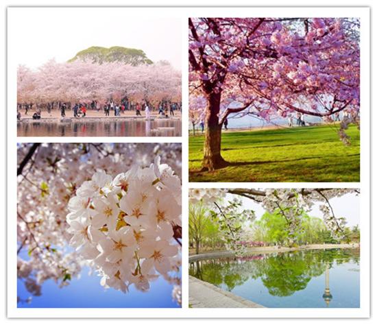 http://www.weixinrensheng.com/shenghuojia/166873.html