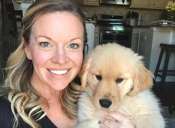 美国一只金毛小奶狗化身导盲犬,照顾一只失明老年狗狗
