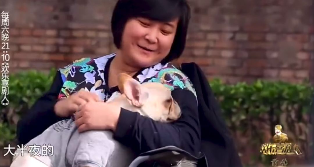 贾玲:以后再也不养狗,我没有养狗的资格