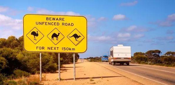 一年近5万澳洲签证被取消
