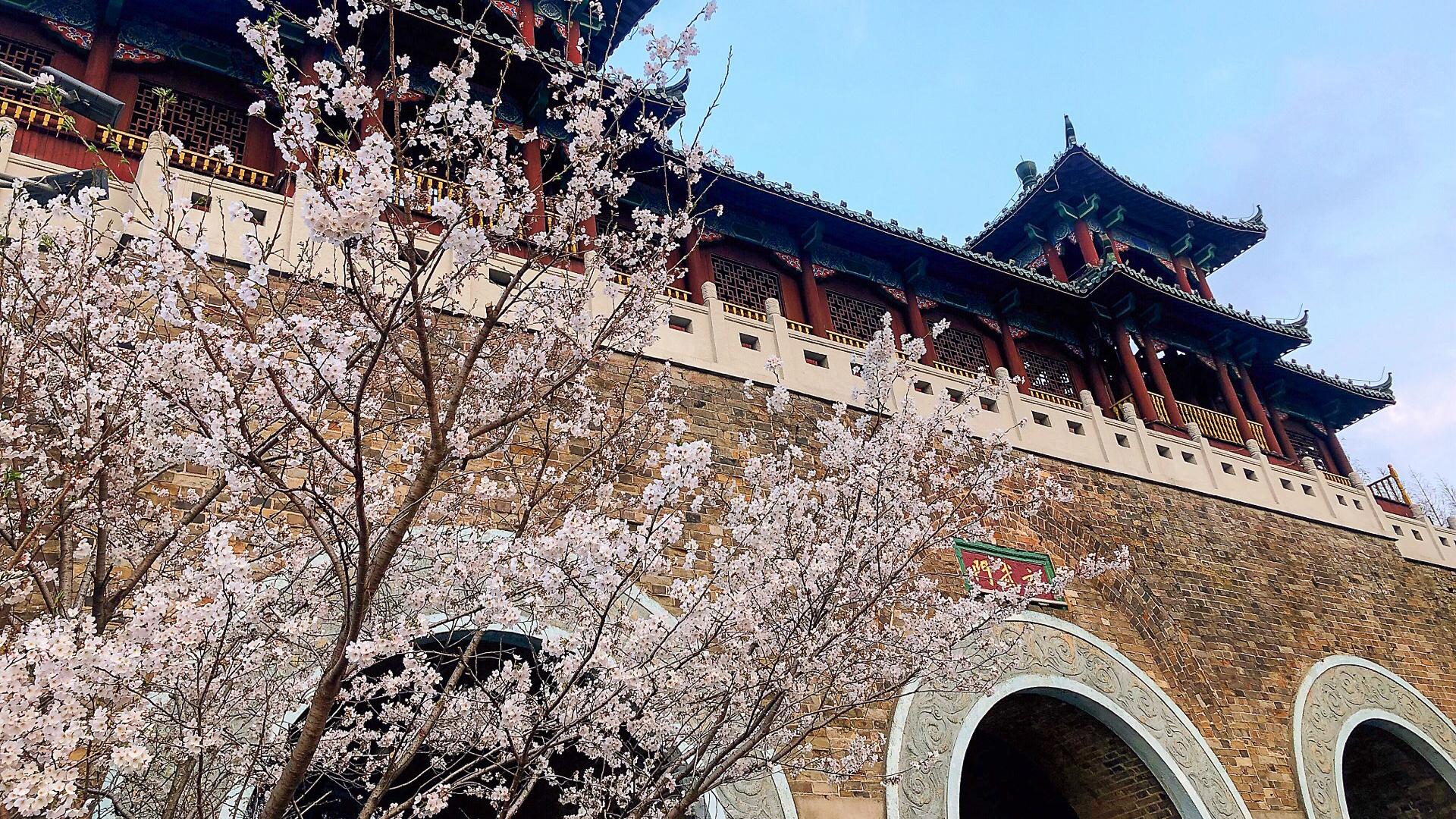 南京踏青时节非常值得去的景区,不是夫子庙,也不是秦淮河
