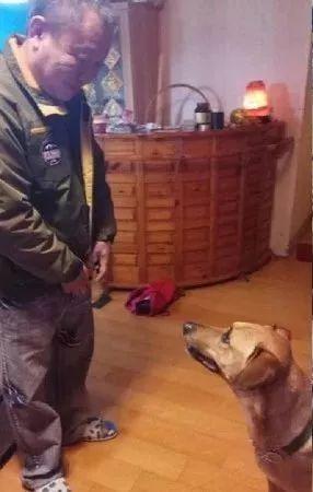说好带狗去老爸家,但没去成,第二天一早老爸跑来狂拍门