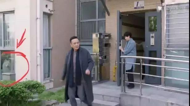看《都挺好》时,铲屎官意外发现自家狗砸去当了群众演员?
