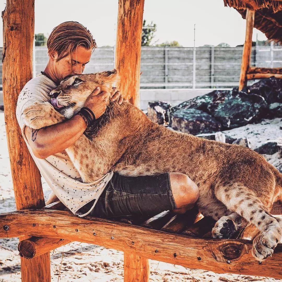 """放弃百万年薪,去非洲""""撸猫"""",他才是朋友圈最该曝光的男人!"""