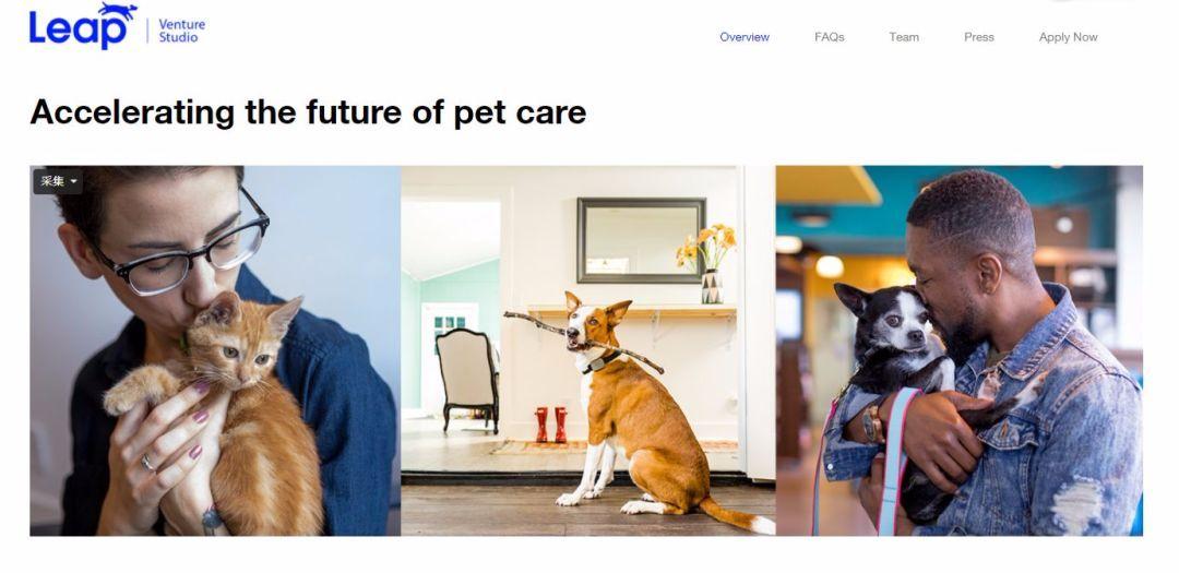 行业机会!玛氏成立新部门,重点投资宠物行业的创新企业