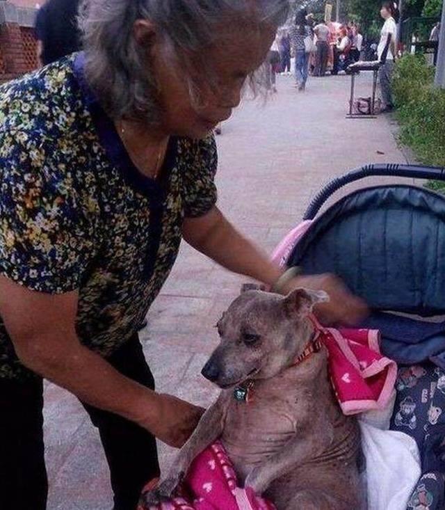 老太太推着婴儿车步履蹒跚,路人看到车上并不是婴儿