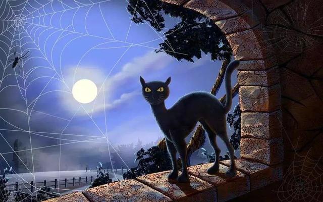 吸猫其实在几千年前就已经成为了流行,并且曾经有真的猫奴