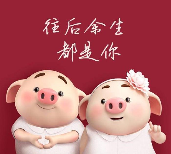 1959年生肖属猪人2020年全年运气、 全年运气平常,还可以碰着不测祸端