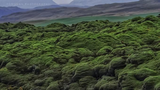 冰岛苔原地貌