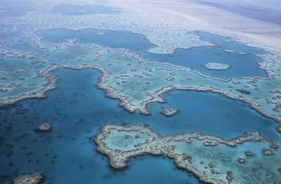 澳洲昆士兰成暑期出游新地标