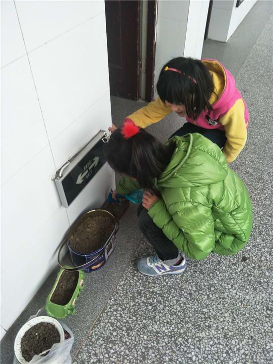 """海安市曲塘镇双楼小学""""垃圾分类""""在行动"""