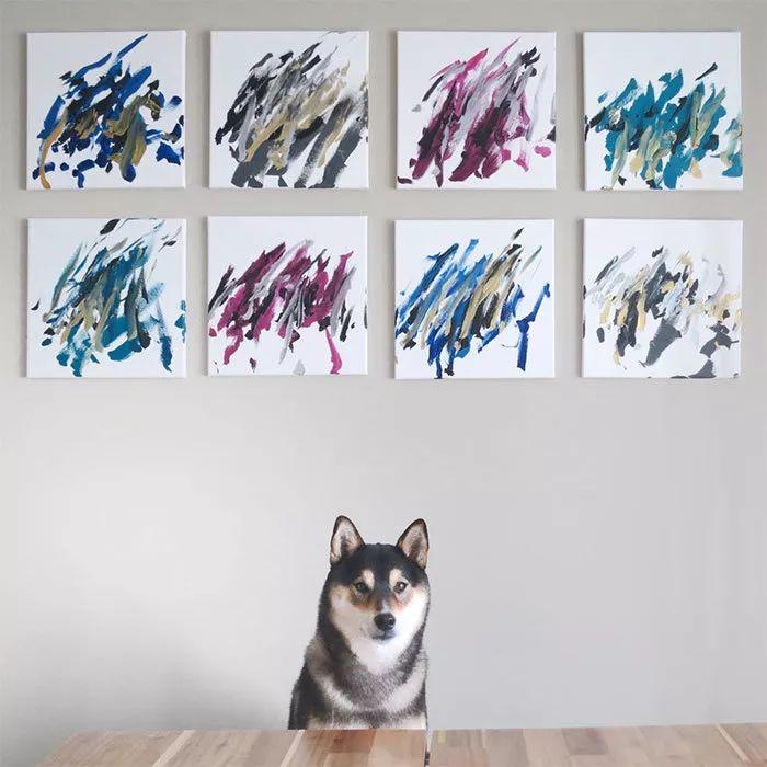 """被媒体誉为""""汪界毕加索"""",靠画画给家里赚了3万多"""