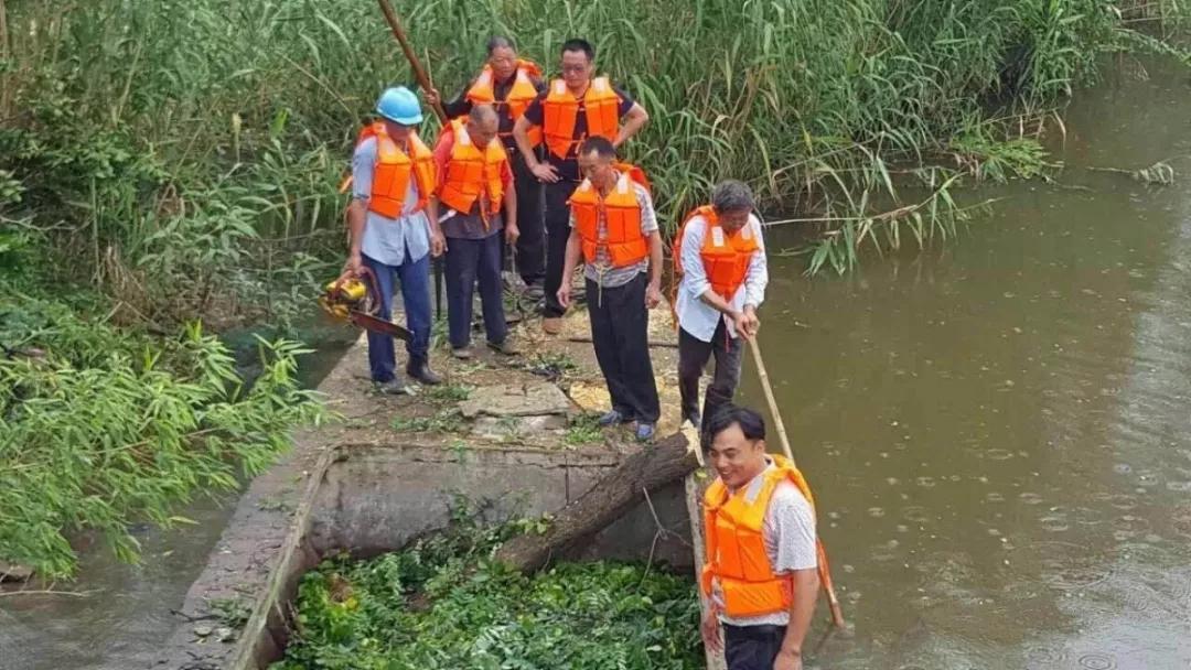海安:三年系统治理清水重现大公