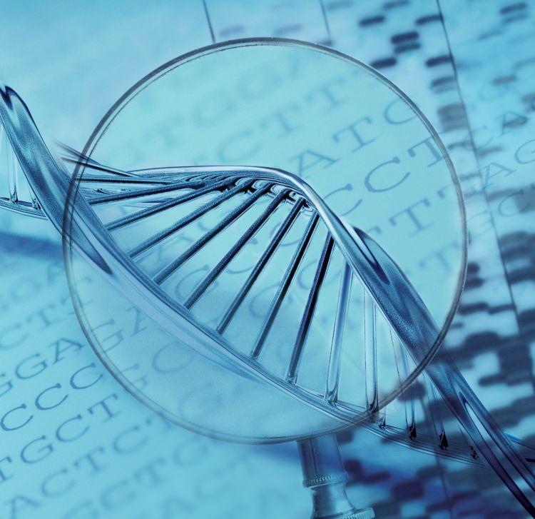 什么是基因检测 基因检测适合哪些人?