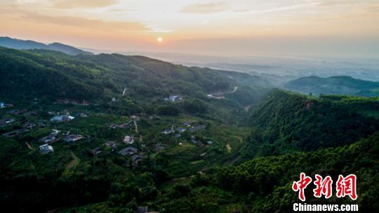四川眉山:海内外专家学者聚焦历史村镇的未来