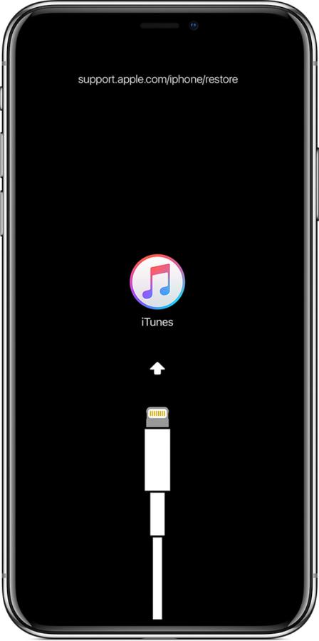 谍照显示iPhone 11最终放弃Lightning接口 转向USB-C的照片 - 3