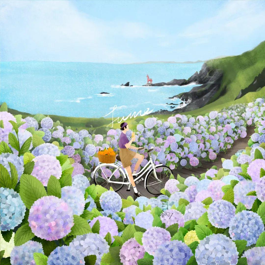 六月壁纸 紫阳花海和柑橘汁 Youngyu