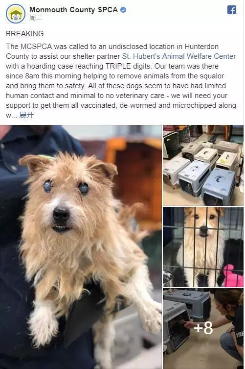 美国188只狗被困狭小住宅幸运,调查之后发现,主人还有称号