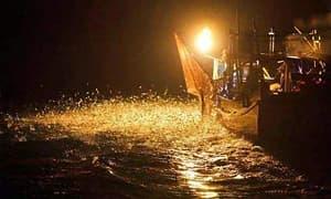 LED集鱼灯市场的春天来了吗?