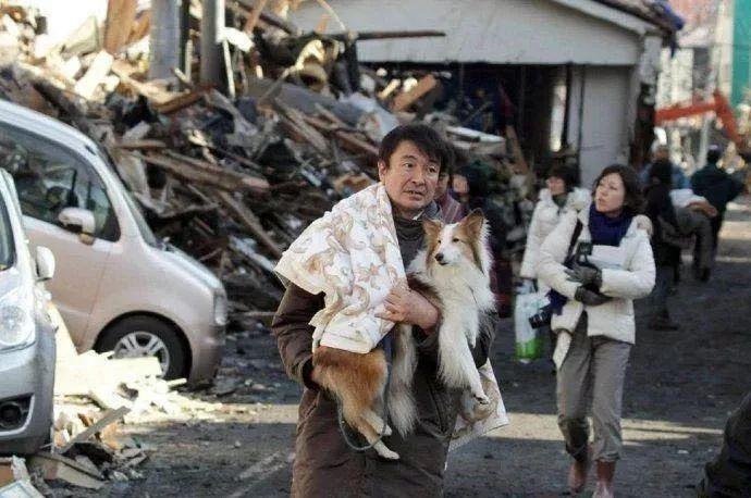 地震你带啥出来了? 俩只大傻狗!