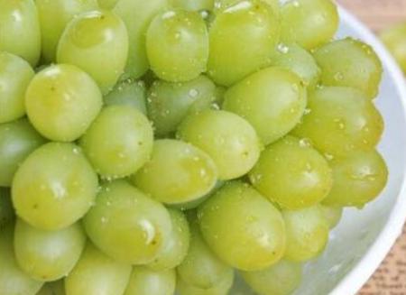 葡萄和提子有啥区别?葡萄上有白霜,还能吃吗?图3