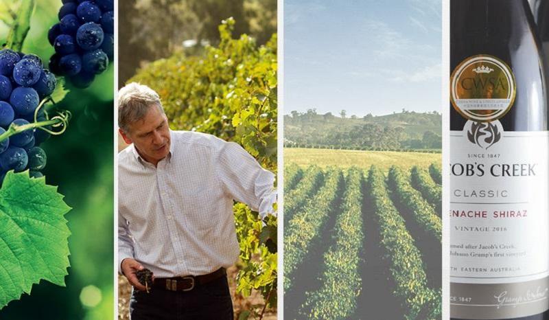 巨头纷纷变卖葡萄酒产业背后的隐忧图2