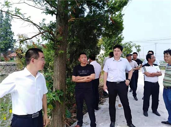 海安市白甸镇白甸村稳步推进人居环境示范点样板建设工程