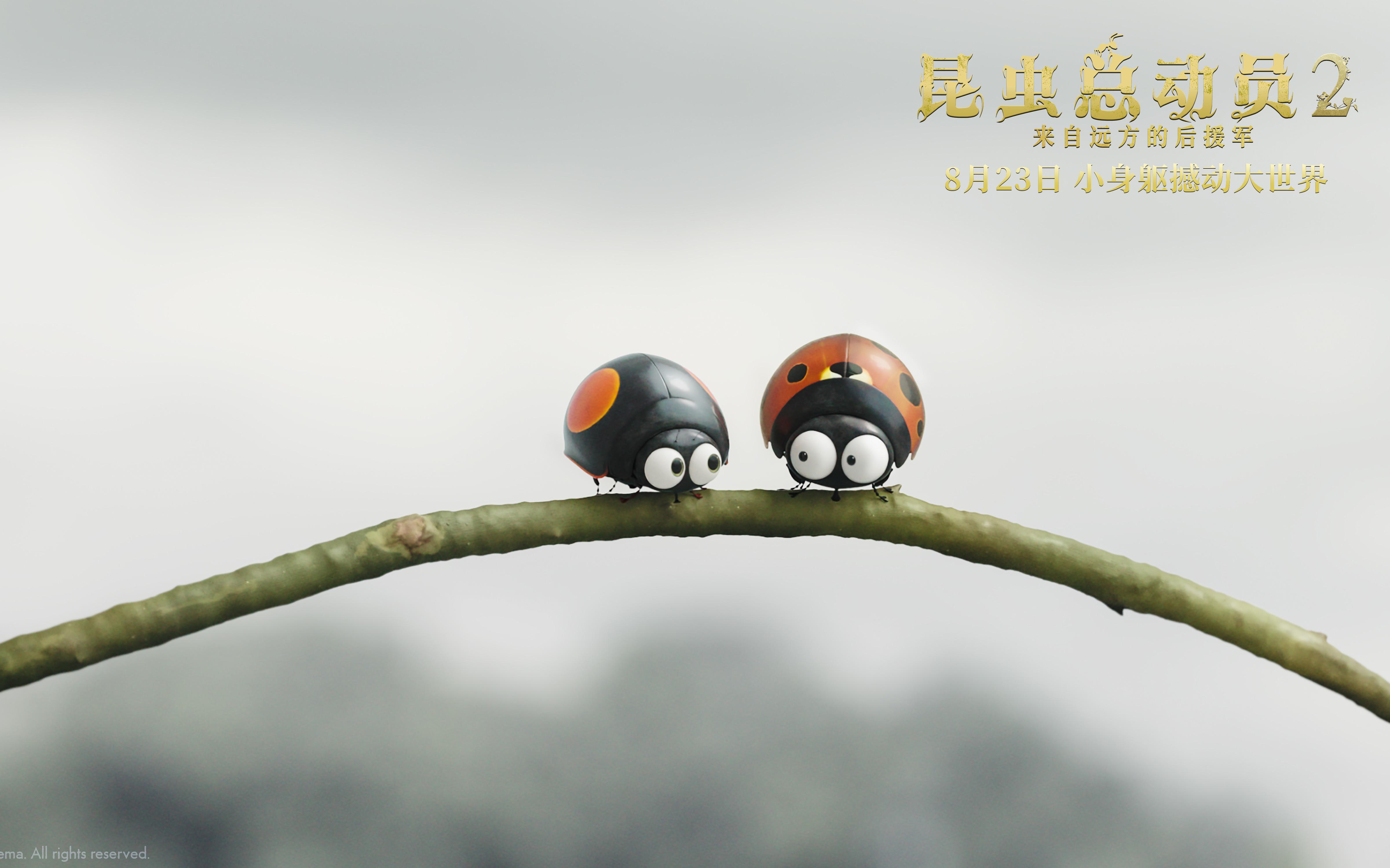 《昆虫总动员2-来自远方的后援军》先导预告曝光 微观世界奇幻大冒险拉开序幕