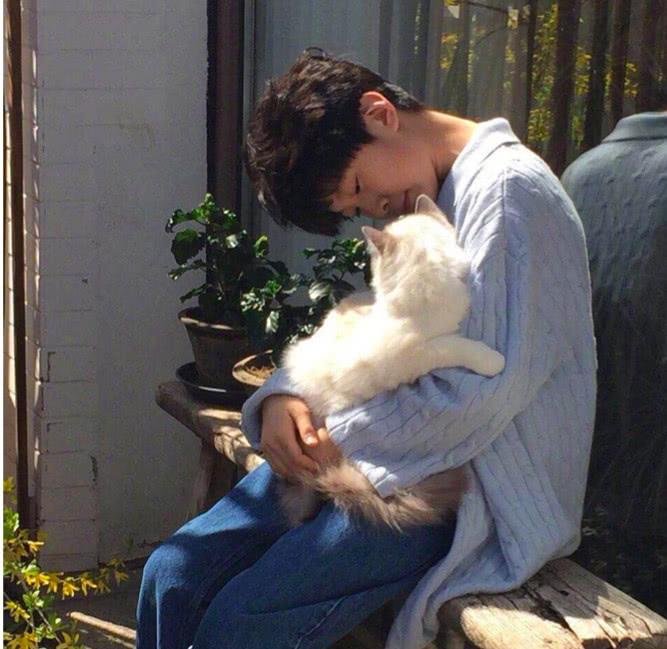 张亮夫妇花了一辆小轿车的钱救儿子天天喜欢的猫