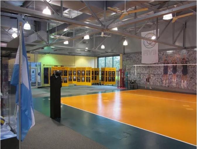 篮球和排球:美国麻省的一对孪生姐妹