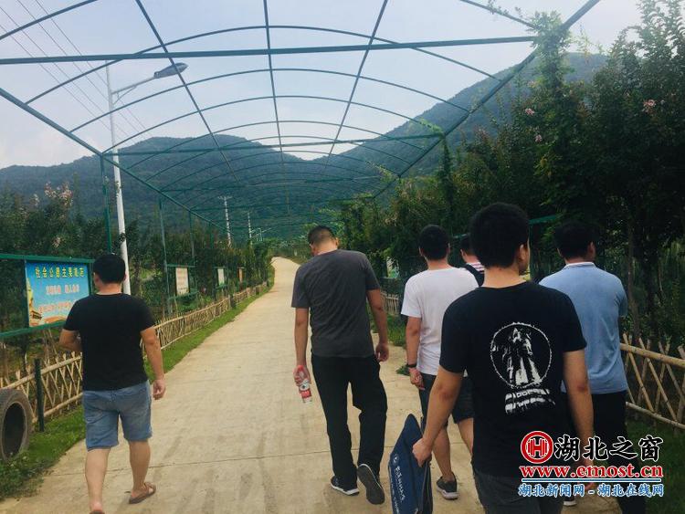 """""""传递梦想 爱在阳新""""--武汉科技大学研究生 走进湖北阳新开展暑期社会实践活动"""